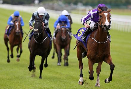 UK Horse Racing Tips: Curragh