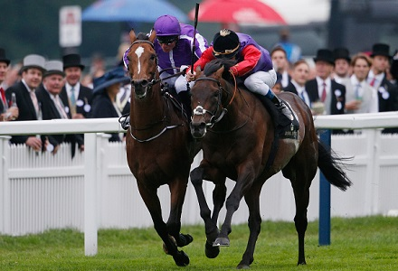 Dartmouth new King George favourite