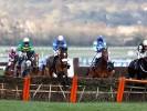 Diego Du Charmil makes impressive start over fences