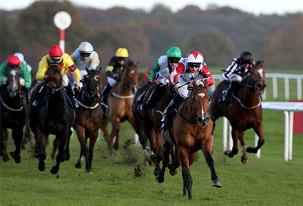 Lord Of The Rock looking for second Spring Mile victory