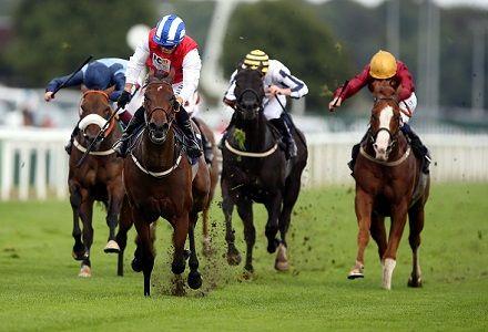Sunday's Money Horse