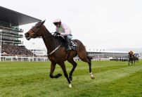Banker or Blowout: Festival Favourites on Day 2