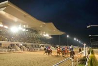 Credit The Giver is pick of the day at Dundalk