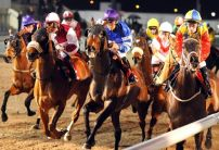 Friday Night's Money Horse