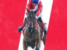 Cheltenham Marsh Novices' Chase 2021: Tips, Runners & Prediction