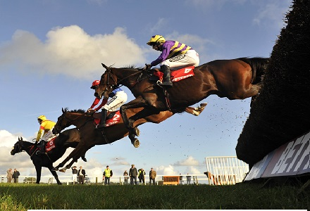 Tippmanboy looks the pick of the lot this Monday