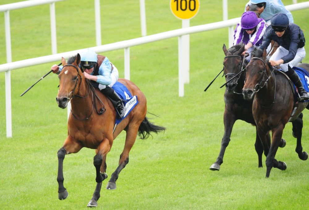 Fairyland cut for Ascot's Albany Stakes after commanding Curragh victory