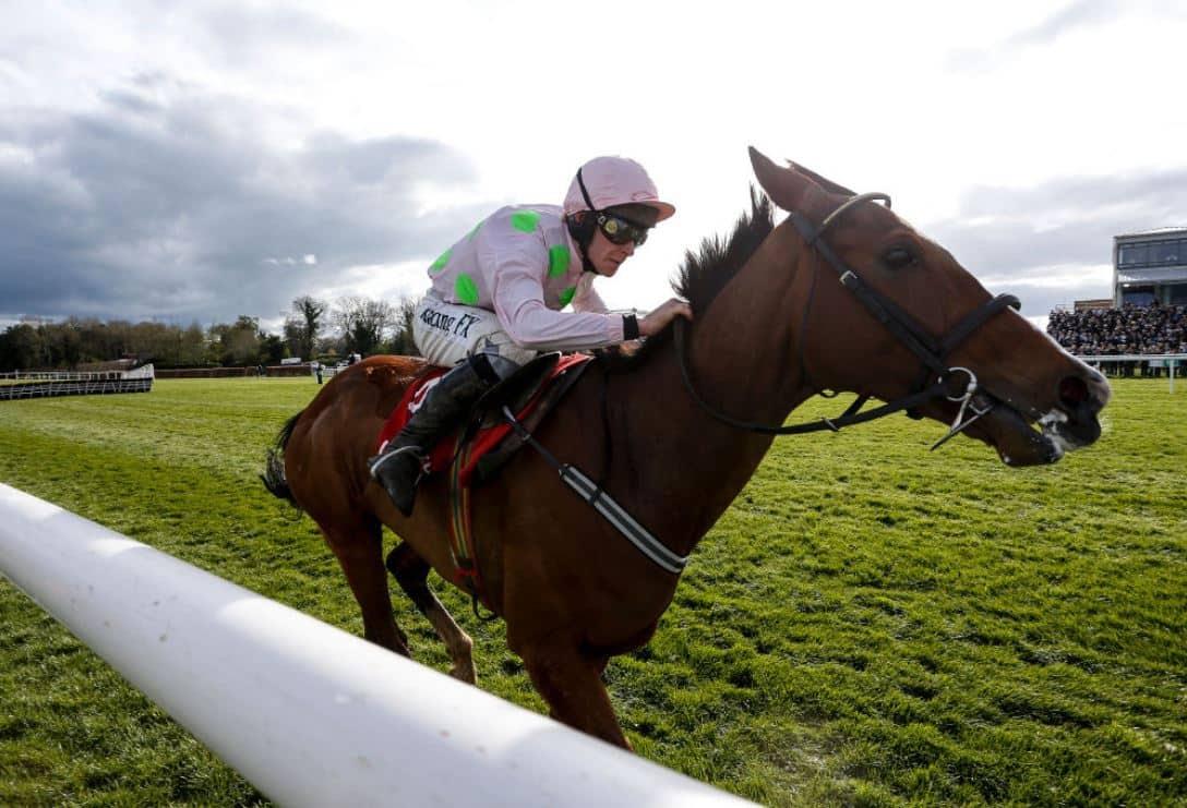 The three most backed horses on day three of Cheltenham