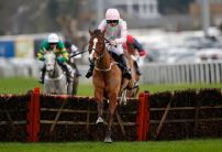 Faugheen heavily backed for Champion Hurdle upon winning return