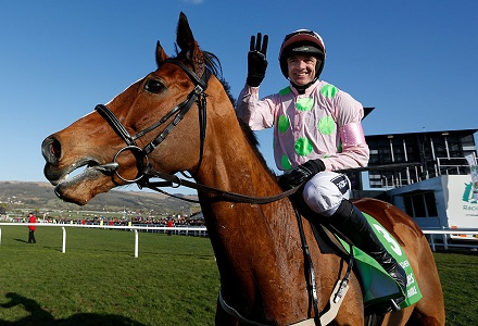 Faugheen backed to take down beloved Buveur D'Air