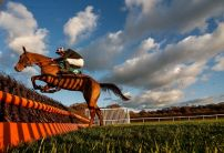 Cheltenham Trials day is the day Festival dreams can be dashed
