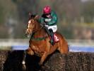 Glen Forsa's odds crash for Arkle following Sandown demolition
