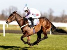 Global Citizen's odds dramatically slashed for County Hurdle