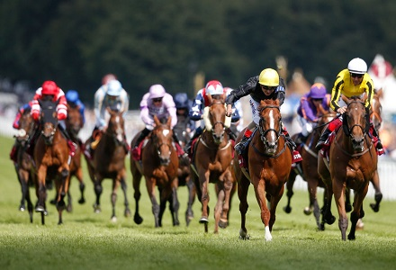 The three most backed horses at Goodwood Festival day one