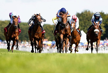 The three most backed horses at Goodwood Festival day three