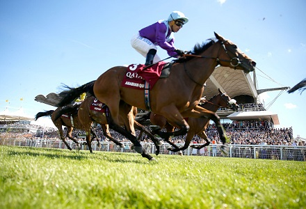 The three most backed horses at Goodwood Festival day five