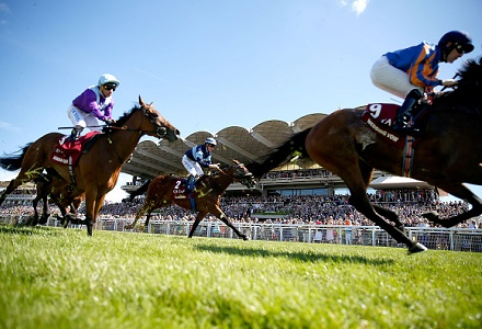 The three most backed horses at Goodwood Festival day four
