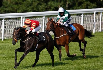 Tom Stanley's Day 1 Goodwood Bets