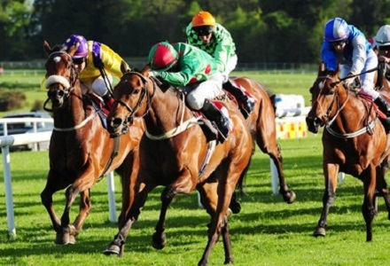 UK Horse Racing Tips: Gowran Park