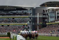 Ucello Conti dominating Grand National betting