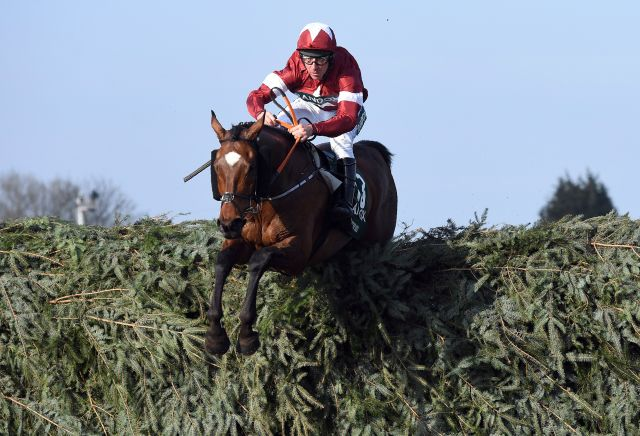 Tiger Roll Grand National odds HALVED following Cheltenham win