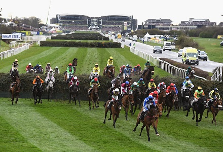 Odds cut in half for no Irish trained horses at Grand National due to Brexit