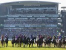 The three most backed horses on day three of the Grand National Festival