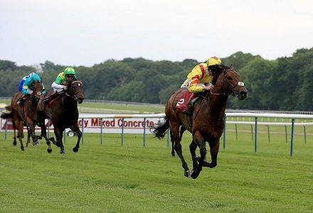Royal Ascot Market Movers Update