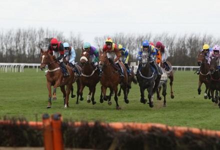Money Horse: Monday's Most Backed Horse