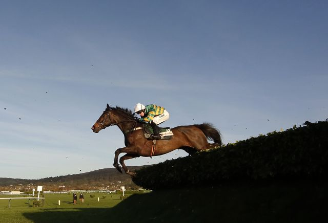 Josies Orders lays down statement for Cheltenham at November meeting