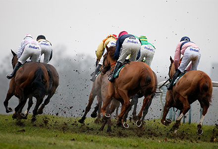 Cheltenham Festival odds: What will the official going be on the opening day?