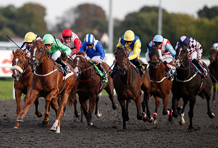 Saturday's Money Horse through Oddschecker