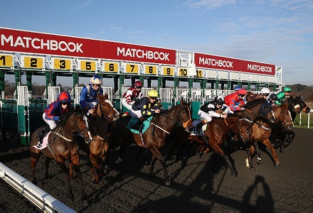 Friday's Money Horse through Oddschecker