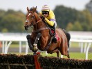 A View From The Rails: Duke Street the way to go at Kempton