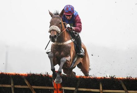 La Bague Au Roi backed to bag a winner at Cheltenham