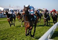 Tuesday Money Horse through Oddschecker