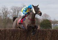 Wednesday Horse Racing Market Movers