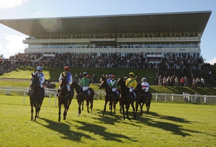 Irish Horse Racing Tips: Limerick