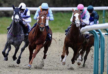 Money Horse: Thursday's Most Backed Horse