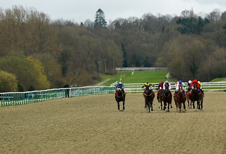 Tuesday Horse Racing Tips