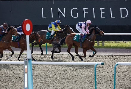Andy Holding's Friday Racing Tips & Preview