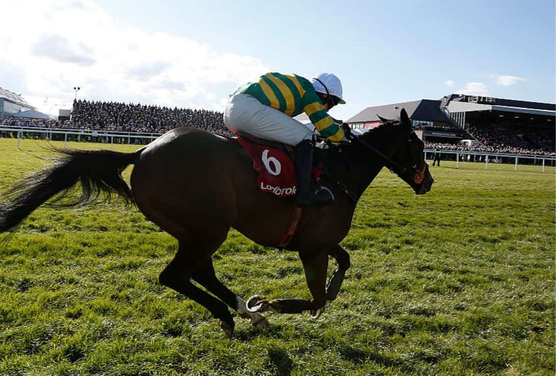 The other Walsh - Mark Walsh being backed for Cheltenham Top Jockey success