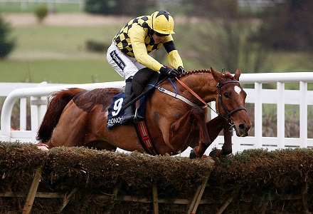 Melon's Champion Hurdle odds drifted after International Hurdle loss