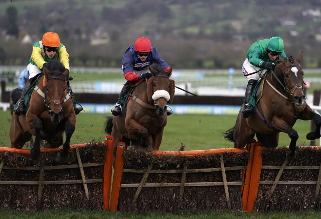 Punters pile on Midnight Shadow winning Stayers' Hurdle
