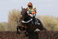 Might Bite looks pick of young pretenders in Gold Cup market