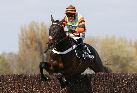 Could Might Bite be the new Kauto Star?