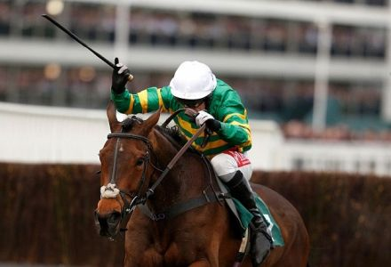 Minella Rocco Ruled out of Grand National