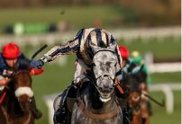 Nick Scholfield: Misterton can run a big race in the Betfair Hurdle