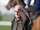 Willie Mullins horse slashed from 100/1 to 25/1 for Grand National