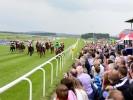 Sunday - Five most backed horses